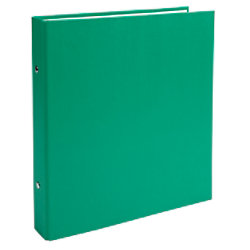 Exacompta Ringbuch 2 Ringe Kaschierter Karton PP Grün 20 Stück 623SE