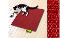 Katten Krabmat
