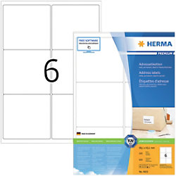 HERMA Adressetiketten 4653 Weiß DIN A4 99,1 x 93,1 mm 100 Blatt à 6 Etiketten
