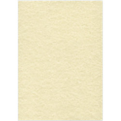 Sigel DP605 Pergamentpapier DIN A4 90 g/m² Perga Champagner 100 Blatt