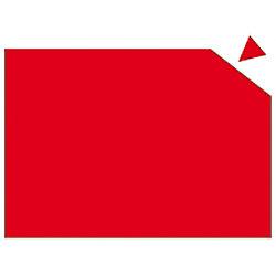 Franken Magnetplatte 841 Rot 29,5 x 20 cm MP841 01